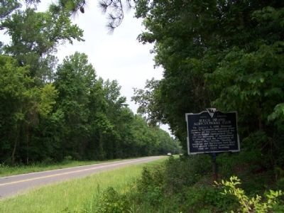 Beech Island Agricultural Club Marker looking west along US 278 image. Click for full size.