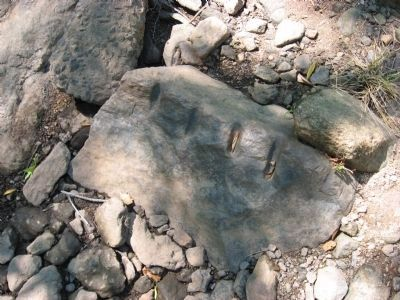 Tool marks on boulder in the riverbed. image. Click for full size.