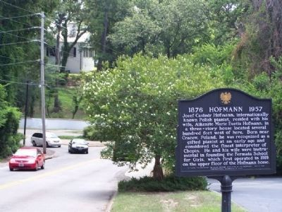 Hofmann Marker, looking south along Laurens Ave. image. Click for full size.