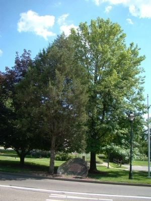 Marker and the <i>Franklinia Alatamaha</i> (Ben Franklin Tree) on the Left image. Click for full size.