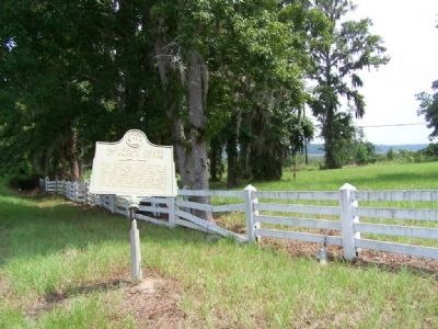Old Court House At Sapelo Bridge Marker , looking east image. Click for full size.