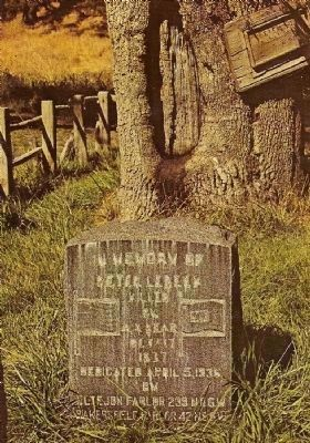Vintage Postcard of the Peter Lebeck Headstone and The Lebeck Oak Tree image. Click for full size.