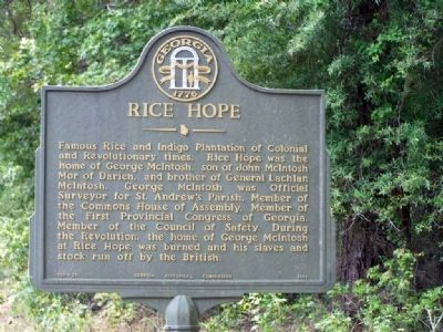 Rice Hope Marker image. Click for full size.