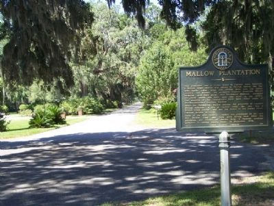 Mallow Plantation Marker, looking back, westward on Pine Harbor Rd. image. Click for full size.