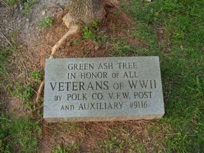 WWII Veterans Green Ash Tree Marker image. Click for full size.