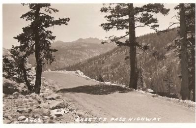 Vintage Postcard - Ebbetts Pass Highway image. Click for full size.