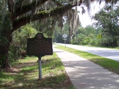 Battle of Gully Hole Creek Marker looking east on Frederica Rd image. Click for full size.