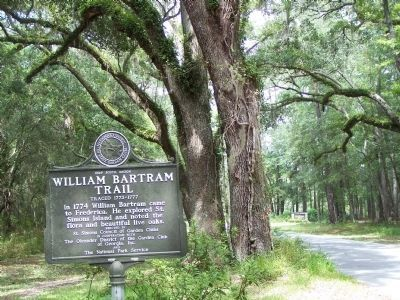 William Bartram Trail Marker, lookin west on Mimosa Dr image. Click for full size.