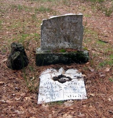 Pioneer Cemetery Headstones image. Click for full size.