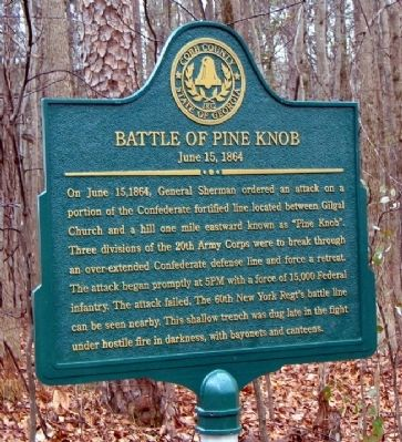 Battle of Pine Knob Marker image. Click for full size.