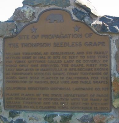 Site of Propagation of the Thompson Seedless Grape Marker image. Click for full size.
