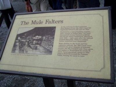 The Mule Falters Marker image. Click for full size.