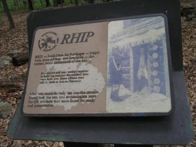 RHIP Marker image. Click for full size.