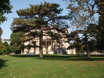 Unsual Tree and  Davis Mansion image. Click for full size.