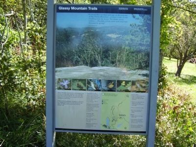 Glassy Mountain Trails Marker image. Click for full size.