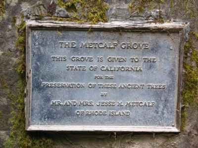 The Metcalf Grove Marker image. Click for full size.