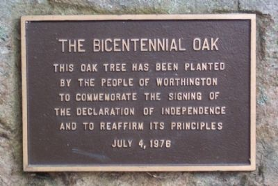 The Bicentennial Oak Marker image. Click for full size.