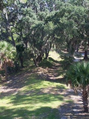 Fort McAllister, moat area, north side image. Click for full size.