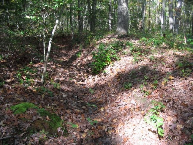 Section of Earthworks near the Marker image. Click for full size.