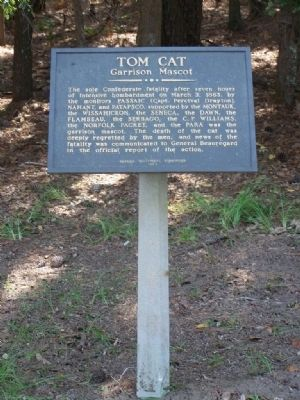 Tom Cat Marker image. Click for full size.