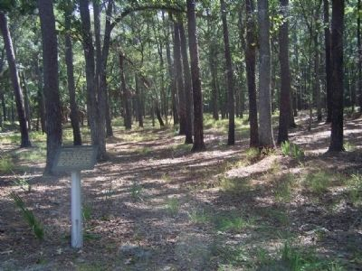 Confederate Land Mines Marker, southside of Fort McAllister image. Click for full size.