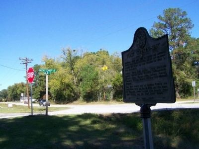 First County Seat Marker, looking north along Ga 17 image. Click for full size.