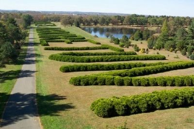 Dawes Arboretum Hedge from Observation Tower, Looking West image. Click for full size.