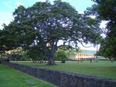 A Small Corner of Fort DeRussy Park image. Click for full size.