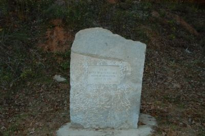 Battle of Musgrove Mill Marker image. Click for full size.