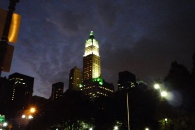 Woolworth Building (night time) image. Click for full size.