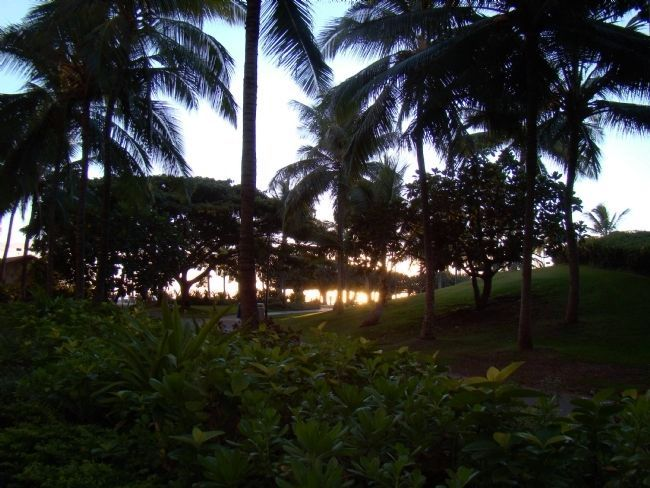 Sunset at Fort DeRussy Park on Wakiki, Honolulu, Oahu Island, Hawaii image. Click for full size.