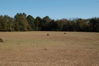 Fields around marker image. Click for full size.