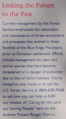 Andrew Pickens Ranger District - Linking the Future to the Past image. Click for full size.