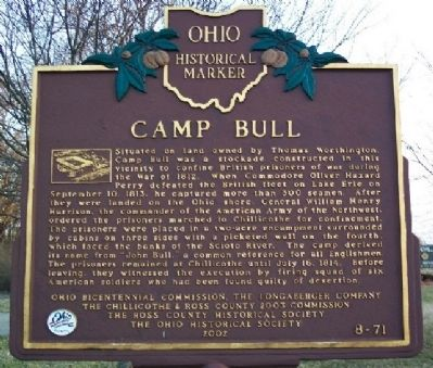 Camp Bull Marker image. Click for full size.