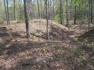 Confederate Earthworks on White Oak Road image. Click for full size.