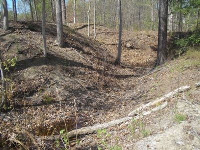 White Oak Road Earthworks image. Click for full size.