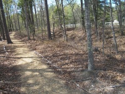 Walking Trail on the White Oak Road Battlefield image. Click for full size.