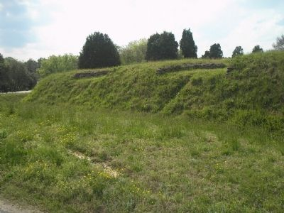 Fort Hoke Fortifications image. Click for full size.
