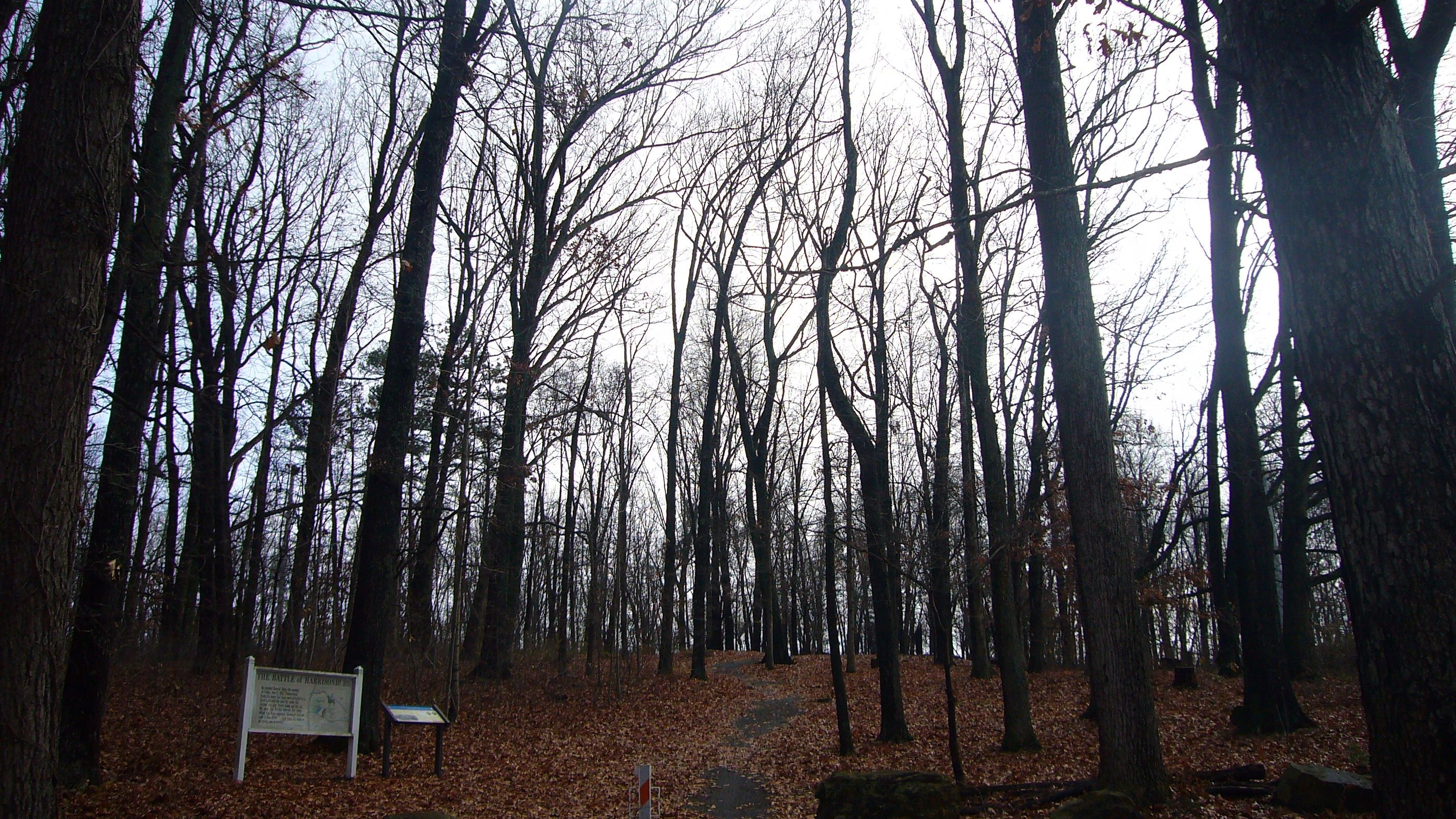 Chestnut Ridge and Battle of Harrisonburg markers