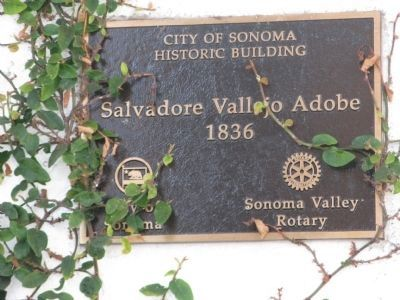 Salvador Vallejo Adobe Marker image. Click for full size.