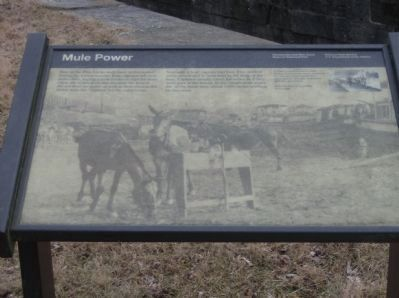 Close-up of Mule Power Marker image. Click for full size.