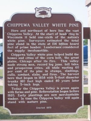 Chippewa Valley White Pine Marker image. Click for full size.