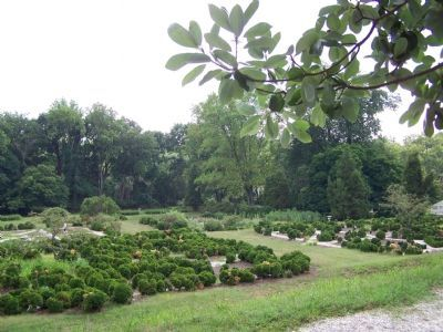 Formal Gardens at Hampton Mansion image. Click for full size.