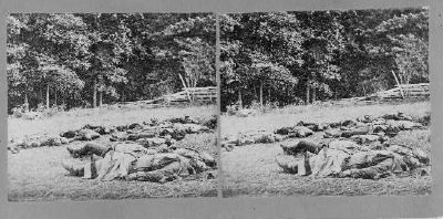 Stereo View of the Confederate Dead image. Click for more information.