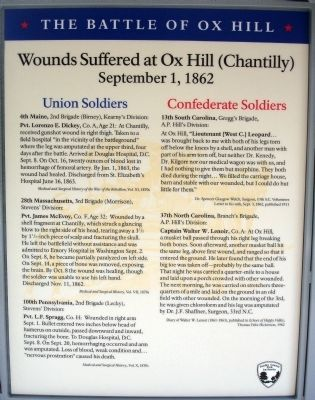 Wounds Suffered at Ox Hill (Chantilly) Panel image. Click for full size.