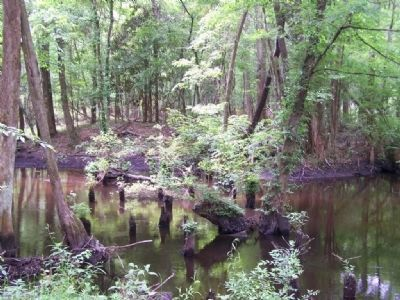 Rivers Bridge Battle site , onetime crossing of Salkewatchie River image. Click for full size.