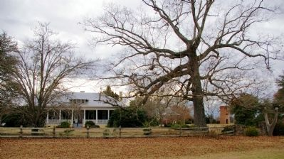 Old Town Plantation Buildings image. Click for full size.