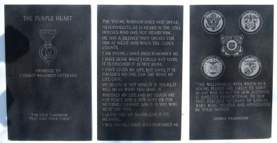 Greenville County Vietnam Veterans Memorial -<br>Southeast Wall image. Click for full size.