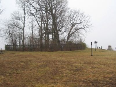 Massachusetts Markers on the South Side of the Copse of Trees image. Click for full size.