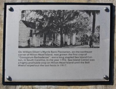 Hilton Head, Ft Walker interpretive marker image. Click for full size.